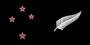 All black southern cross and silver fern NZL flag