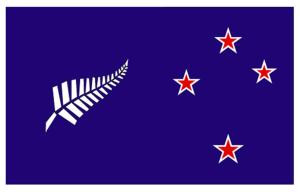 Blue Fern and Southern Cross NZL flag